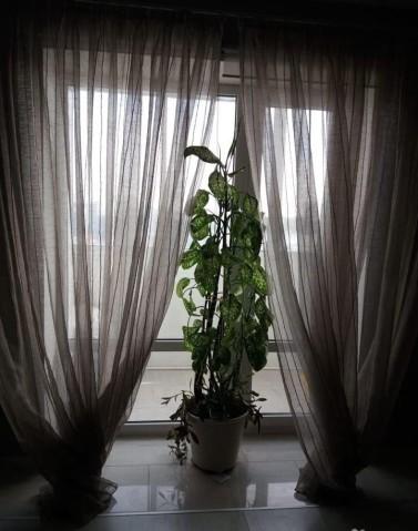 Аренда 2х к. квартиры Коломяжский пр-кт, 26 - фото 8 из 8