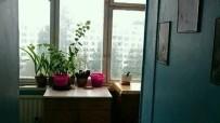 Дальневосточный пр-кт, 30 - фото #4