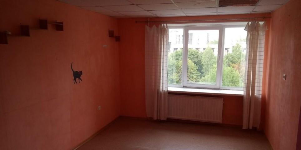 Аренда комнаты Заневский пр-кт, 32 - фото 2 из 5