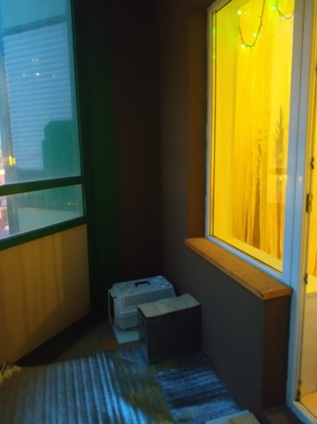 Продажа 1 к. квартиры г Мурино, ул. Шувалова, 7 - фото 8 из 8