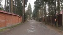 г Всеволожск, ул. Крылова, 11 - фото #1